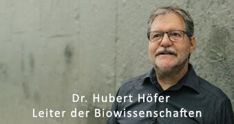 Hubert Höfer über die Zusammenarbeit mit der Filmproduktion Karlsruhe mp-film
