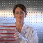 Porträt einer Wissenschaftlerin des Joint Research Centers der Europäischen Kommission. Imagefilm der Filmproduktion Karlsruhe mp-film über die Forschung die sich mit dem Finden von alternativen Methoden zu Tierversuchen beschäftigt. Bild auf der Seite Portfolio.
